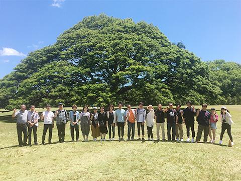 社員旅行ハワイの写真